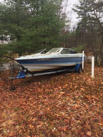 Free Bayliner Capri with trailer