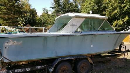 Seabird on trailer
