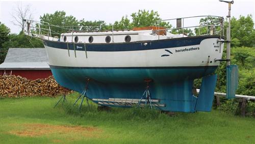 Willard Starbird stern